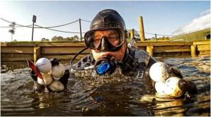Premier Lake Balls Diver
