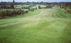 Gaude Luce Golf Club 2