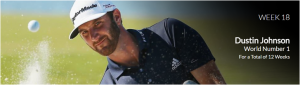 Dustin Johnson - The US Open