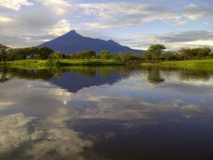 Kilimanjaro Golf & Wildlife Estate v4